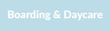 Boarding and Daycare Services | Miss Drew's Doggy Daycare Spring City