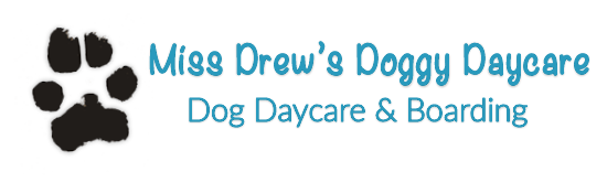 Miss Drew's Doggy Daycare